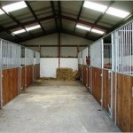 Causeway Coast Stables