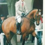 Lexvet Sponsor MD Equestrian