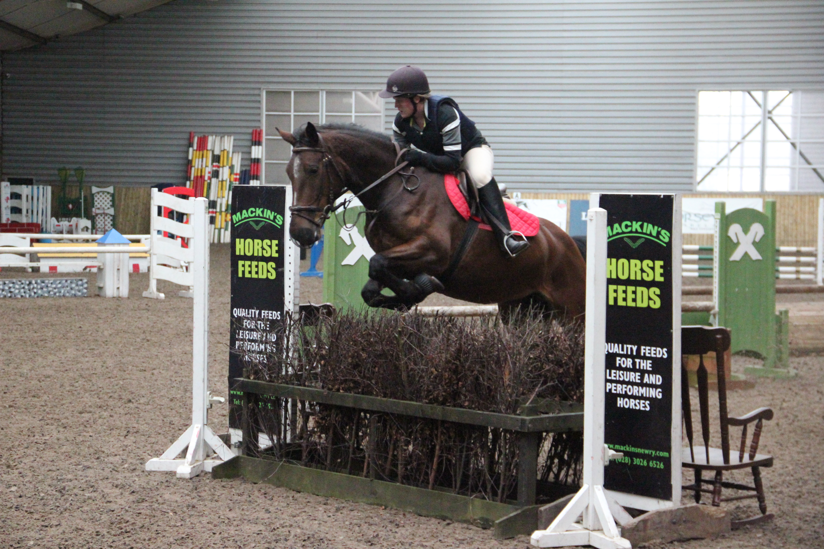 No Rest At Ravensdale Lodge Equestrian News Ni