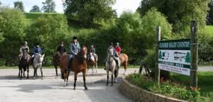 clogher_horses