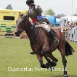 Friday's Gallery from Balmoral Show