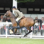 Saturday Results from Dublin Horse Show 2013