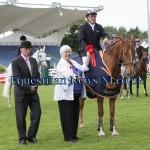 Amateur Final at Dublin