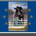 Cavan Home Pony International Results