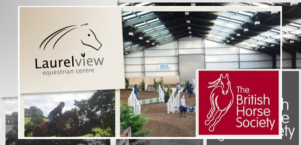 Busy Summer Ahead for Laurel View Equestrian Centre