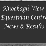 Competitors brave elements at dressage
