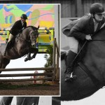 Northern Ireland Working Hunter Association February Show