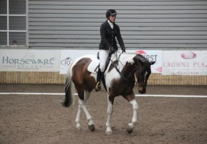 The Jackson Four At Ravensdale Lodge Equestrian News Ni