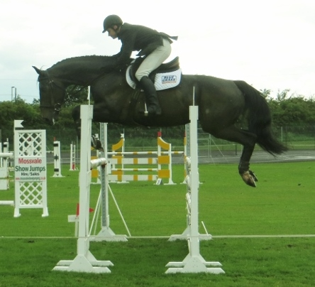 mid antrim horse show grows in popularity equestrian news ni. Black Bedroom Furniture Sets. Home Design Ideas