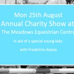 Third Annual Charity Show Jumping Show for Beth