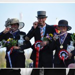 FEI World Single Driving Gold for Wilbrord van den Broek and Germany