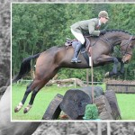 Irish hunter sale day draws near
