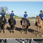 CAFRE Rider Development Workshop at Lusks
