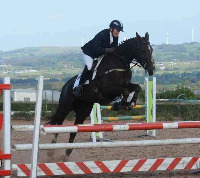 Double Challenge At Laurel View : Equestrian News NI