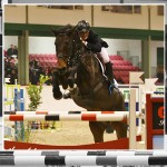 World Class Emerald International Equestrian Centre For Sale