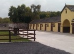 Greenmount Equine Hospital
