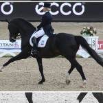 FEI World Cup™ Dressage 2014/2015 Update