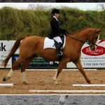 Iveagh Dengie Dressage Competition Hots Up For Week Two