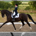 Dressage Riders join Team Tredstep