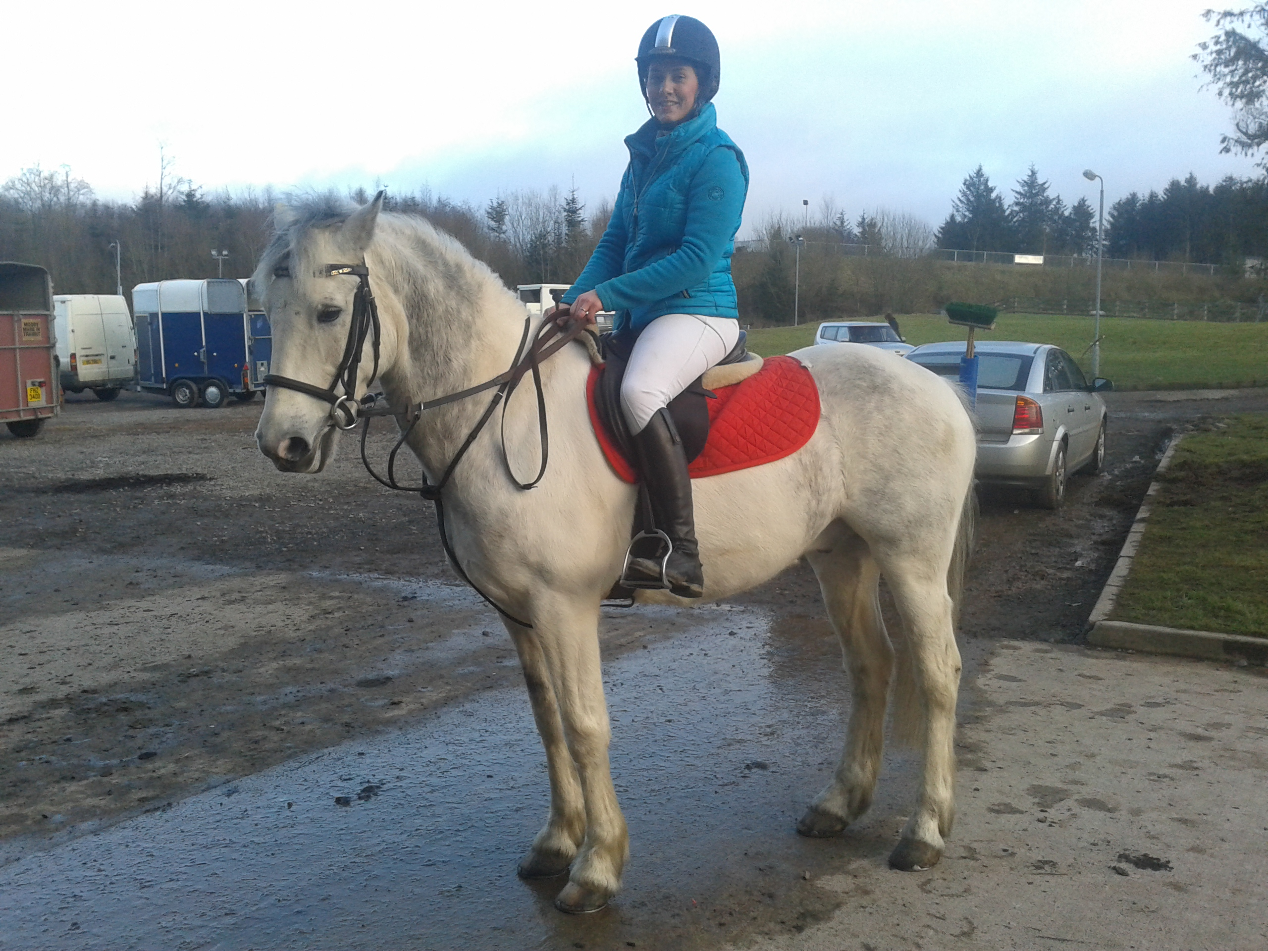 Ciara In Fine Form At Strule Valley Equestrian News Ni