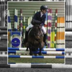 Ponies to the fore at Ravensdale Lodge