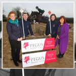 Pegus Sponsor Young Event Horse Championship