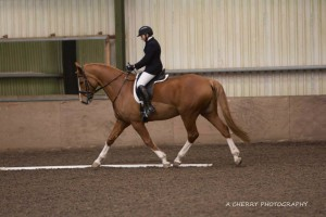 Winners of the 1st League SMWRC Dressage Novice class – Martina McKinley & Oliver Hardy (photo courtesy of Adrian Cherry Photography).