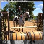 Madison Diamond Wins again at Gransha Equestrian Centre Derby Series