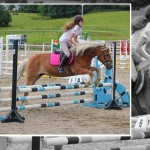 "RDS ""Bumper"" Show Set for Ravensdale Lodge"