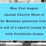 Annual Charity Show Jumping Show @ The Meadows 31st Aug