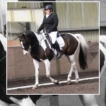 Walk, trot and canter into the Laurel View Winter Dressage League
