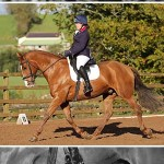 Mill Yard Enjoy Highly Competitive Dressage League Finale